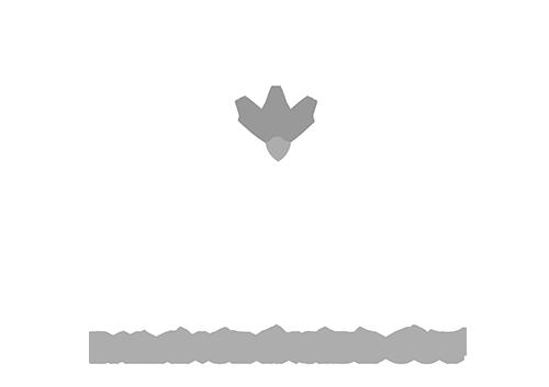 Laurus Training